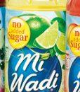 mi-wadi-grp-1